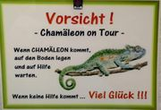 Chamäleon on Tour Gruppe