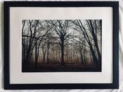 Copyright-Fotos in Holzrahmen 30x40