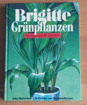 BRIGITTE GRÜNPFLANZEN VON ASPARAGUS BIS