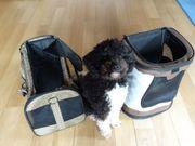 Hunderucksack und Hundetragetasche