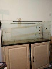 Aquarium 120x50x40