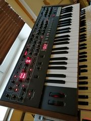 Sequential - Prophet-6 incl MwSt Und