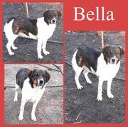Sanfte Bella