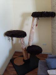 Trixie Naturkratzbaum an Selbstabholer