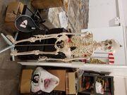 2x Hochwertig Lebensgroßes Skelett