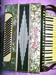 Akkordeon Serenade mit Koffer