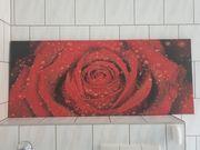 Großes Wandbild mit Rose Maße