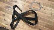 Hundebrustgeschirr mit Halsband