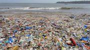 Plastikmüll in Öl verwandeln u