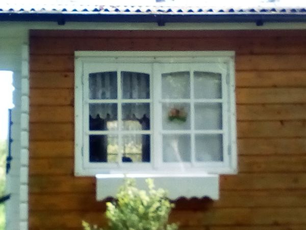 Gartenhaus Tür Fenster
