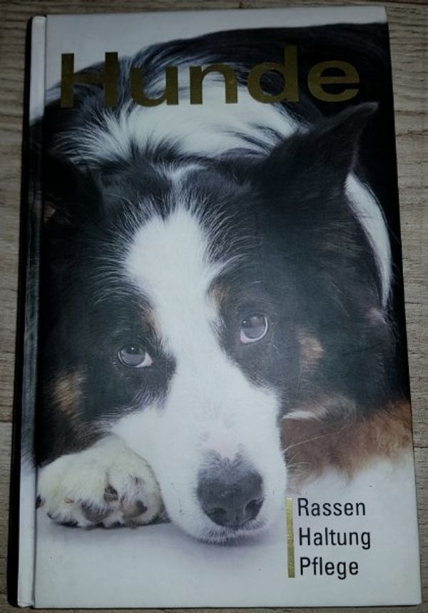 Hunde Buch Verhalten Pflege Erziehung