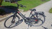 Damen Fahrrad Pegasus