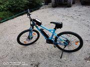 E-Bike KATARGA LT E1 46cm