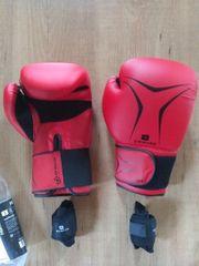 Box-Handschuhe 12 OZ