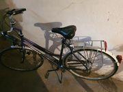 Damen Stadt Fahrrad Giant Allrounder
