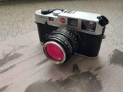 Leica M6 Panda Summicron 50mm