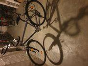 Müsing Arriba Trekking Fahrrad