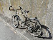 Fahrrad Wheeler 26