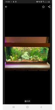 Aquarium Juwel Aquarium komplett - ohne
