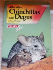 Alles über Chinchillas und Degus