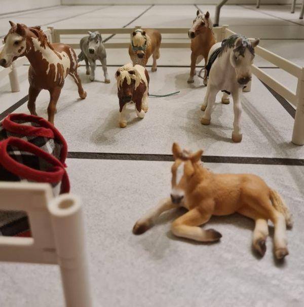 Schleich Pferde mit Zaun