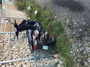 Motorroller Adly GTA-50 E-Zuschuss bis