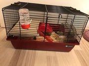 Zwerg hamster mit Käfig