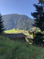 suche Berghütte Maisäß Stall im
