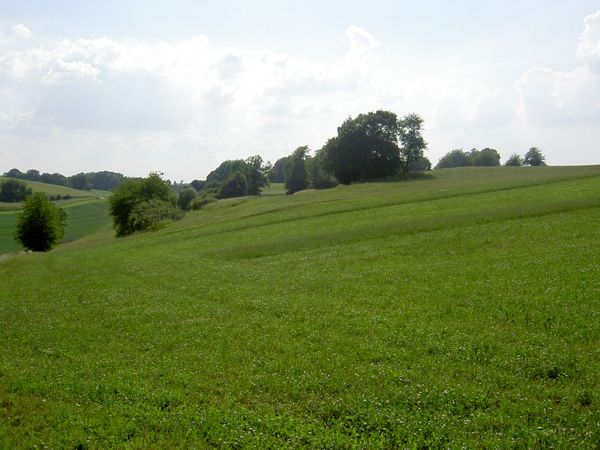 Bauernhof Resthof mit Fachwerkhaus u