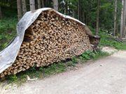 Brennholz -Hartholz Birke