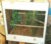 Lanzo Cube 60iger Kunststoff Terrarium
