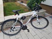 Herren Trekking-Fahrrad KTM Veneto Cross