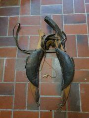 Ochsengeschirr Pferdegeschirr Esel Ziegengeschirr Antik