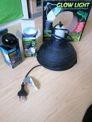 Reptilien Lampe