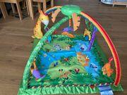 Fisher-Price Baby Erlebnisdecke