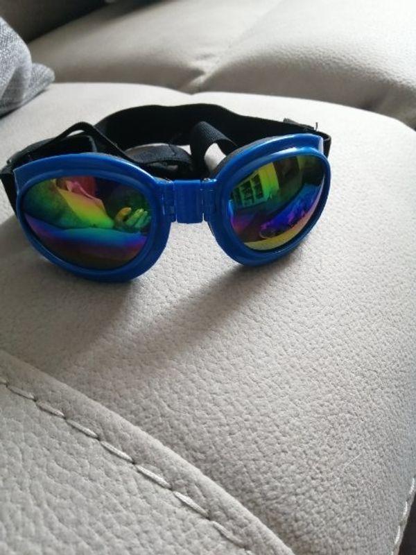 Schutzbrille für mittlere Hunde