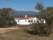 Finca - Landgut - Olivenplantage in Spanien