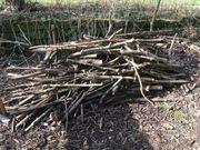 Brennholz kostenlos abzugeben