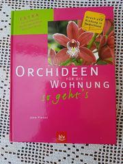 Orchideen für die Wohnung - so