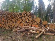 brennholz stammholz holz weichholz inkl