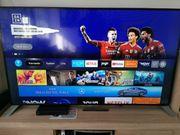 Philips 65 Zoll LCD-TV mit