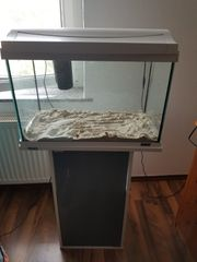 Aquarium von Tetra zuverkaufen