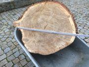 Baumscheiben 6cm bis 60 cm