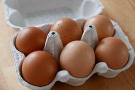 M - XL Eier von glücklichen: Kleinanzeigen aus Karlsruhe Palmbach - Rubrik Essen und Trinken