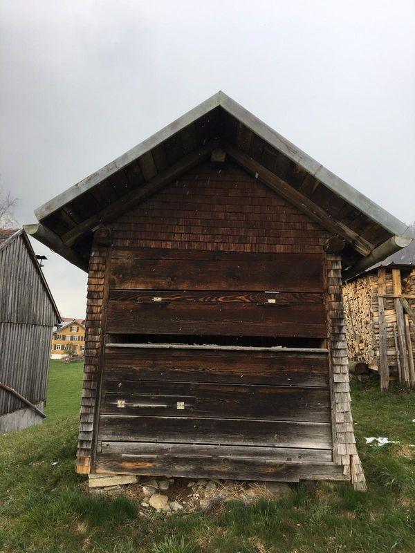 Bienenhaus zu mieten in Lingenau