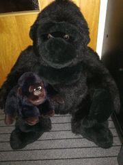 Riesengorilla mit Baby