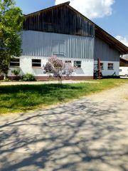 Landwirtschaftliche Gebäude ehemaliger Stall zu