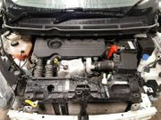 Motor XUCD Ford Transit Courier