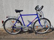 Herren-Trekking-Fahrrad ANGELO 28 Zoll 24-Gang