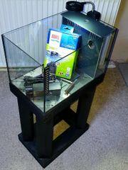 Aquarium abzugeben